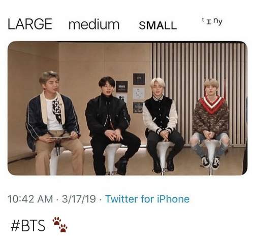 Iphone, Twitter, and Bts: LARGE medium SMALL E ny  10:42 AM 3/17/19 Twitter for iPhone #BTS 🐾