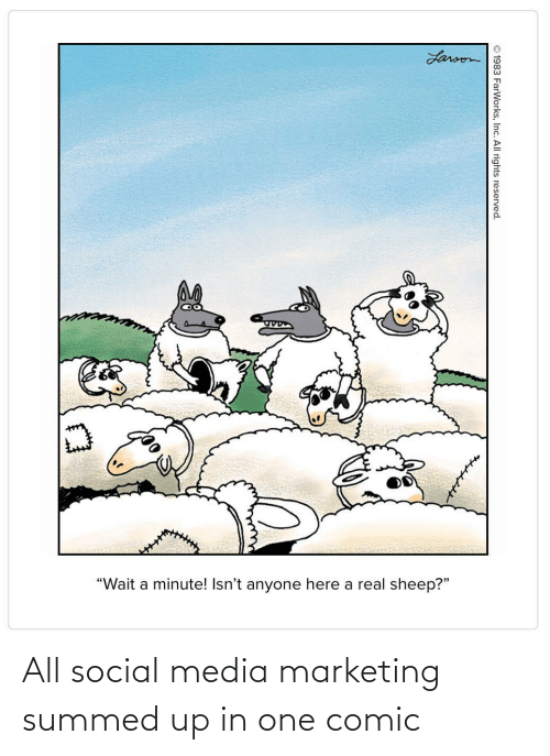 "Social media: Larson  ""Wait a minute! Isn't anyone here a real sheep?""  © 1983 FarWorks, Inc. All rights reserved. All social media marketing summed up in one comic"