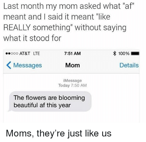 "Af, Beautiful, and Moms: Last month my mom asked what ""af""  meant and I said it meant ""like  REALLY something"" without saying  what it stood for  AT&T LTE  7:51 AM  100961  Messages  Mom  Details  iMessage  Today 7:50 AM  The flowers are blooming  beautiful af this year Moms, they're just like us"