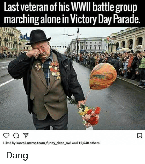 Meme Team: Last veteran of his WWII battle group  marching alone in Victory Day Parade.  Liked by kawaii.meme team, funny clean owl and 10,640 others Dang