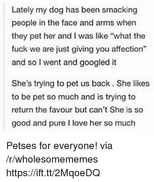 "Love, Fuck, and Good: Lately my dog has been smacking  people in the face and arms when  they pet her and I was like ""what the  fuck we are just giving you affection""  and so I went and googled it  She's trying to pet us back. She likes  to be pet so much and is trying to  return the favour but can't She is so  good and pure I love her so much Petses for everyone! via /r/wholesomememes https://ift.tt/2MqoeDQ"