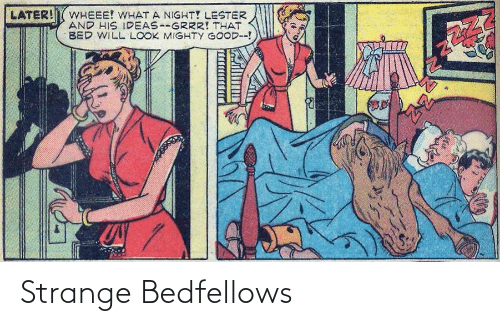 later: LATER!  WHEEE! WHAT A NIGHT! LESTER  AND HIS IDEAS--GRRR! THAT  BED WILL LOOK MIGHTY GOOD--! Strange Bedfellows