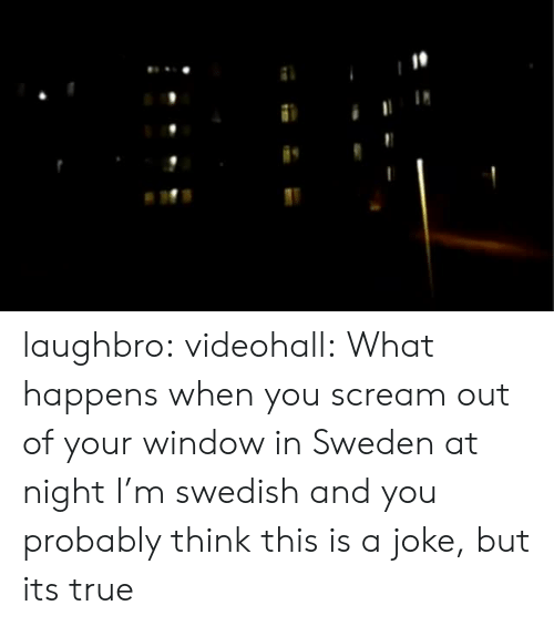 Its True: laughbro:  videohall:  What happens when you scream out of your window in Sweden at night  I'm swedish and you probably think this is a joke, but its true