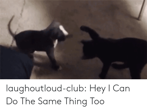 Club, Tumblr, and Blog: laughoutloud-club:  Hey I Can Do The Same Thing Too