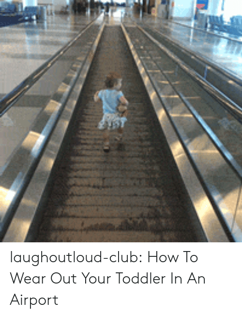 Club, Tumblr, and Blog: laughoutloud-club:  How To Wear Out Your Toddler In An Airport