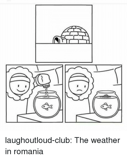 Club, Tumblr, and Blog: laughoutloud-club:  The weather in romania