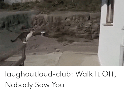 Walk It Off: laughoutloud-club:  Walk It Off, Nobody Saw You