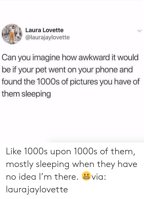 Phone, Awkward, and Pictures: Laura Lovette  @laurajaylovette  Can you imagine how awkward it would  be if your pet went on your phone and  found the 1000s of pictures you have of  them sleeping Like 1000s upon 1000s of them, mostly sleeping when they have no idea I'm there. 😬via: laurajaylovette