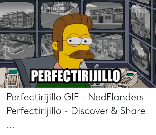 Ned Flanders Meme: Laussyo los  uscentes  KING  MOES  PERFECTIRIJILLO Perfectirijillo GIF - NedFlanders Perfectirijillo - Discover & Share ...