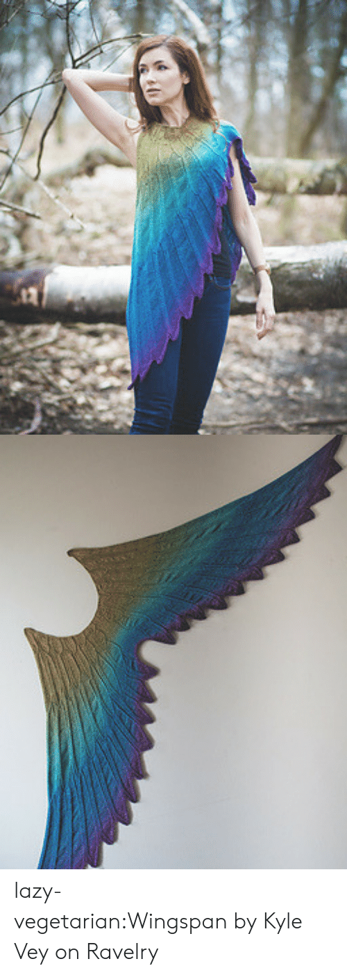 Designers: lazy-vegetarian:Wingspan by Kyle Vey on Ravelry