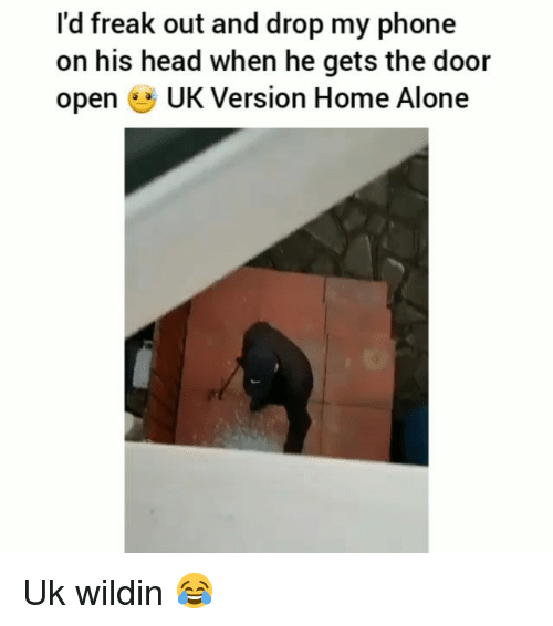 Being Alone, Funny, and Head: l'd freak out and drop my phone  on his head when he gets the door  open UK Version Home Alone Uk wildin 😂