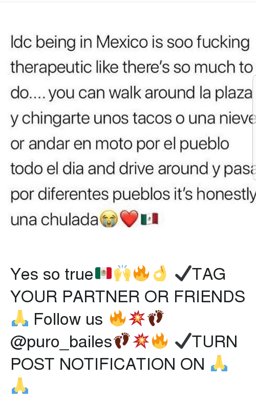 Friends, Fucking, and Memes: ldc being in Mexico is soo fucking  therapeutic like there's so much to  do.... you can walk around la plaza  y chingarte unos tacos o una nieve  or andar en moto por el pueblo  todo el dia and drive around y pas  por diferentes pueblos it's honestly  una chulada Yes so true🇲🇽🙌🔥👌 ✔TAG YOUR PARTNER OR FRIENDS🙏 Follow us 🔥💥👣@puro_bailes👣💥🔥 ✔TURN POST NOTIFICATION ON 🙏🙏