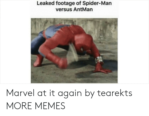 Dank, Memes, and Spider: Leaked footage of Spider-Man  versus AntMan Marvel at it again by tearekts MORE MEMES