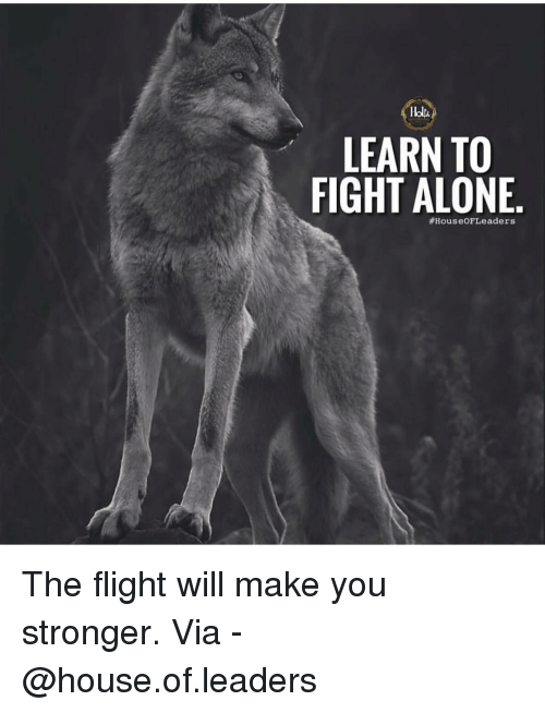 Being Alone, Memes, and Flight: LEARN TO  FIGHT ALONE  #HouseOFLe aders The flight will make you stronger. Via - @house.of.leaders
