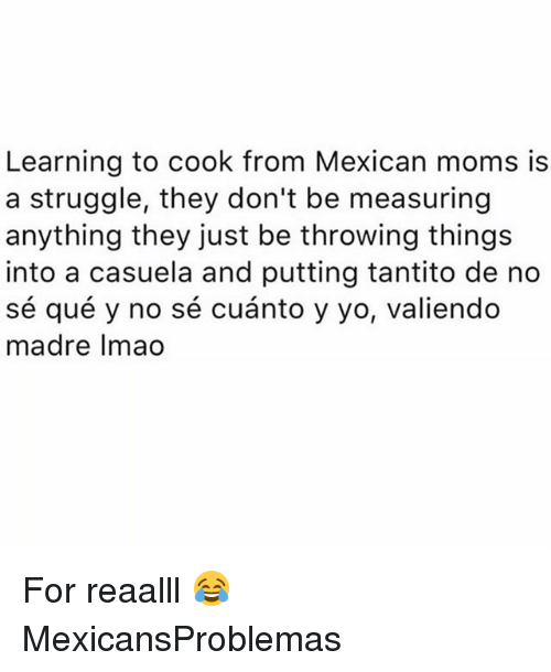 Memes, Moms, and Struggle: Learning to cook from Mexican moms is  a struggle, they don't be measuring  anything they just be throwing things  into a casuela and putting tantito de no  sé qué y no sé cuánto y yo, valiendo  madre Imao For reaalll 😂 MexicansProblemas