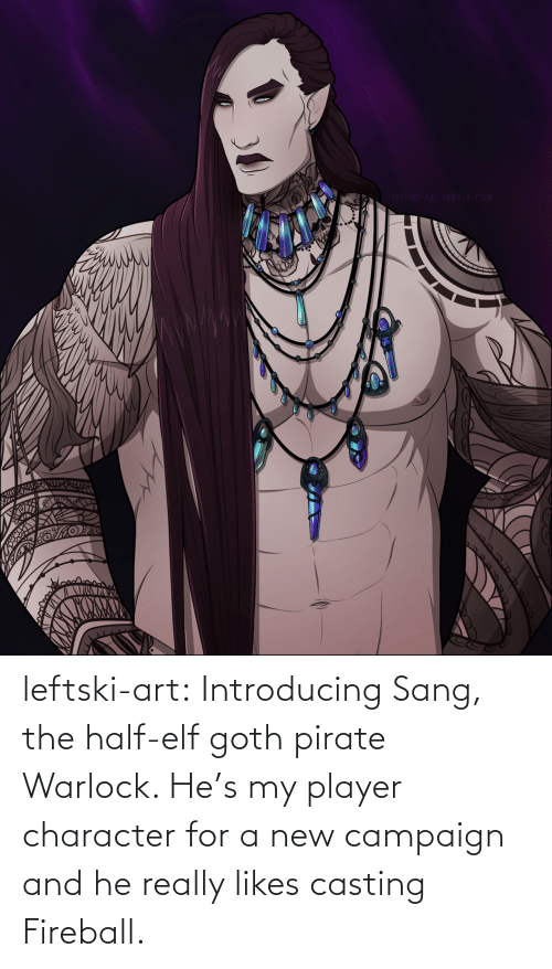 Pirate: LEFTSKI-ART.TUMBLR.COM leftski-art:  Introducing Sang, the half-elf goth pirate Warlock. He's my player character for a new campaign and he really likes casting Fireball.