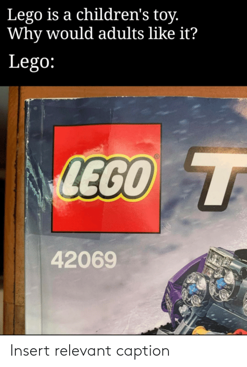 relevant: Lego is a children's toy.  Why would adults like it?  Lego:  LEGO T  42069 Insert relevant caption