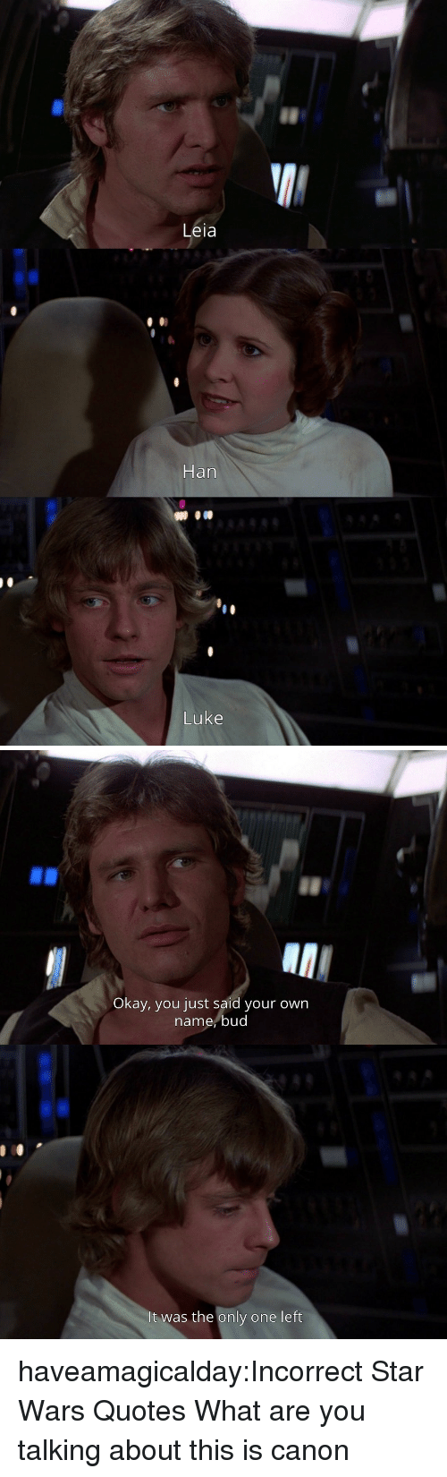 what-are-you-talking-about: Leia  Han  Luke   Okay, you just said your own  name,bud  It was the only one left haveamagicalday:Incorrect Star Wars Quotes  What are you talking about this is canon