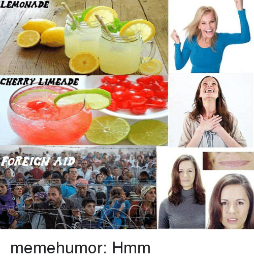 Tumblr, Blog, and Http: LEMONADE  CHERRY LiMEADE  FOREIGN AID memehumor:  Hmm