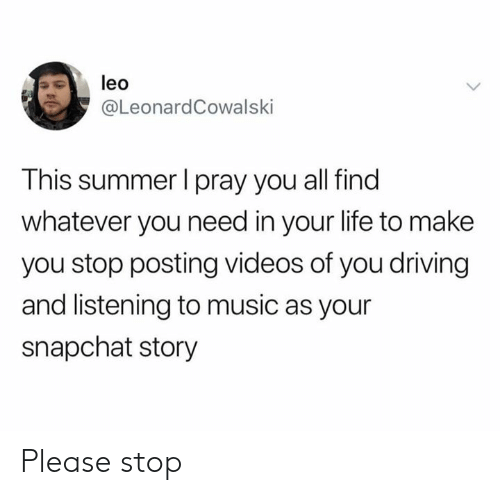 Dank, Driving, and Life: leo  @LeonardCowalski  This summer I pray you all find  whatever you need in your life to make  you stop posting videos of you driving  and listening to music as your  snapchat story Please stop