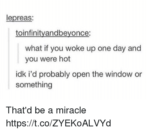 Memes, 🤖, and One: lepreas:  toinfinityandbeyonce:  what if you woke up one day and  you were hot  idk i'd probably open the window or  something That'd be a miracle https://t.co/ZYEKoALVYd