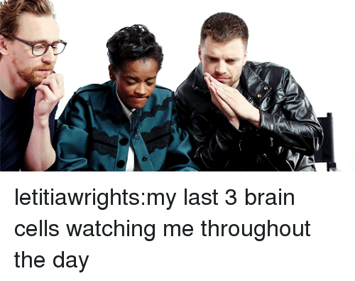 Tumblr, Blog, and Brain: letitiawrights:my last 3 brain cells watching me throughout the day