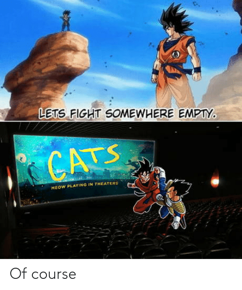 somewhere: LETS FIGHT SOMEWHERE EMPTY.  CATS  MEOW PLAYING IN THEATERS Of course
