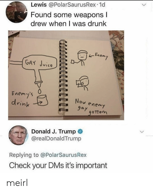 Enem: Lewis @PolarSaurusRex.1d  Found Some weapons  drew when I was drunk  -Enem  (GA in𤫢.PE  Enemy's  drink  ,) Donald J. Trump  @realDonaldTrump  Replying to @PolarSaurusRex  Check your DMs it's important meirl
