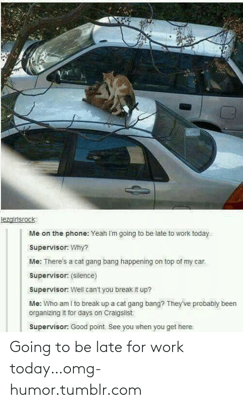 Be Late: lezgirlsrock:  Me on the phone: Yeah I'm going to be late to work today.  Supervisor: Why?  Me: There's a cat gang bang happening on top of my car.  Supervisor: (silence)  Supervisor: Well can't you break it up?  Me: Who am i to break up a cat gang bang? They've probably been  organizing it for days on Craigslist  Supervisor: Good point. See you when you get here: Going to be late for work today…omg-humor.tumblr.com