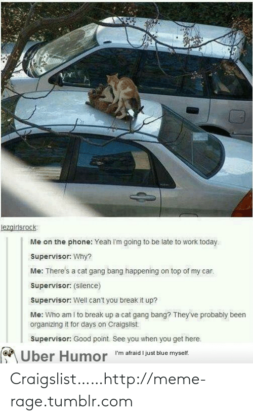 """Be Late: lezgirlsrock:  Me on the phone: Yeah I'm going to be late to work today.  Supervisor: Why?  Me: There's a cat gang bang happening on top of my car.  Supervisor: (silence)  Supervisor: Well can't you break it up?  Me: Who am I to break up a cat gang bang? They've probably been  organizing it for days on Craigslist.  Supervisor: Good point. See you when you get here.  MÜber Humor """"'m afraid l just blue myself. Craigslist……http://meme-rage.tumblr.com"""
