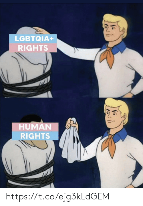 human rights: LGBTQIA+  RIGHTS  HUMAN  RIGHTS https://t.co/ejg3kLdGEM