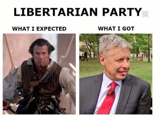 Libertarianism: LIBERTARIAN PARTY  WHAT I GOT  WHAT I EXPECTED