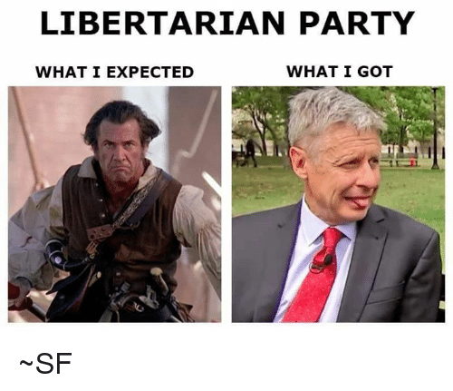 Libertarianism: LIBERTARIAN PARTY  WHAT I GOT  WHAT I EXPECTED ~SF