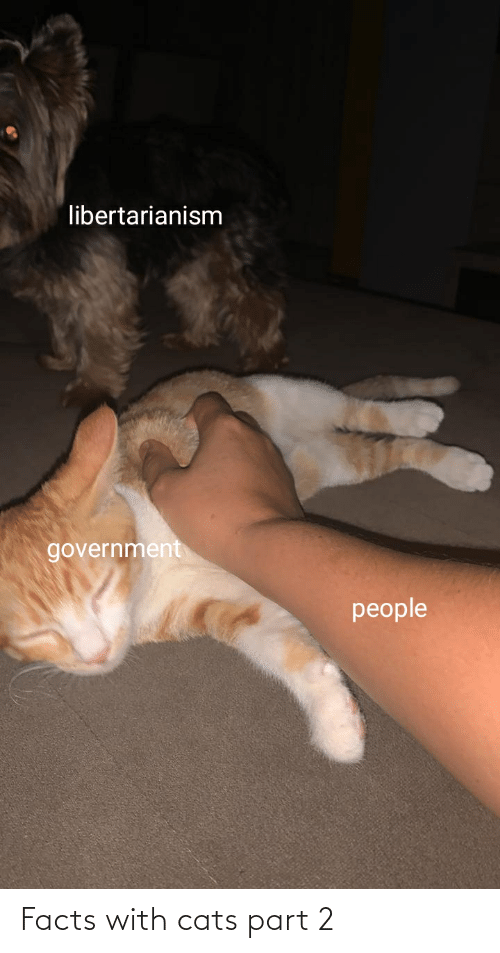 Libertarianism: libertarianism  government  people Facts with cats part 2