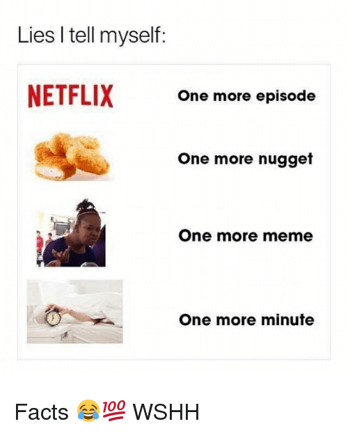 Facts, Meme, and Memes: Lies I tell myself:  NETFLIX  One more episode  One more nugget  One more meme  One more minute Facts 😂💯 WSHH