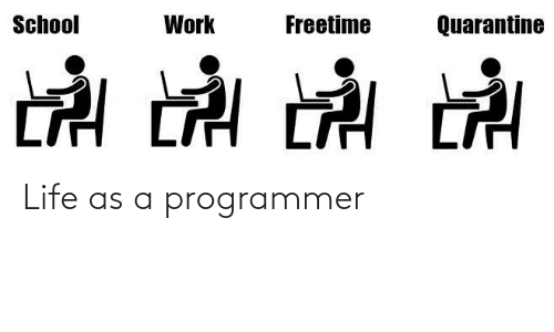 Life: Life as a programmer