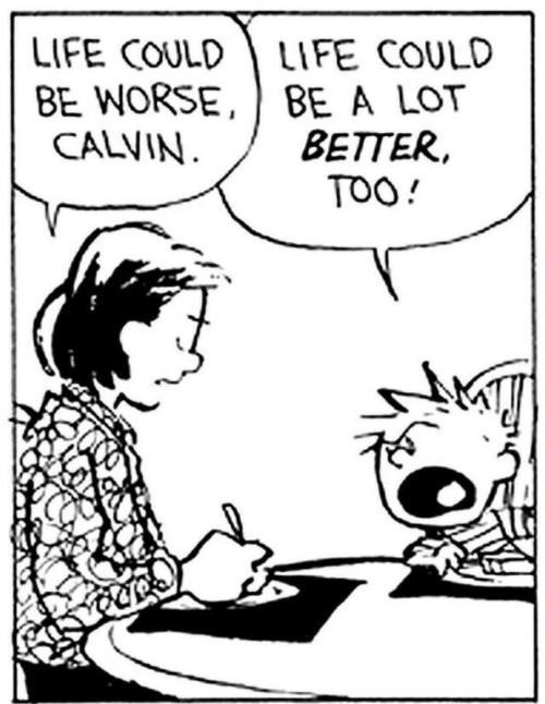 Life, Calvin, and Too: LIFE COULDLIFE COULD  BE WORSE, BE A LOT  BETTER,  TOO!  CALVIN