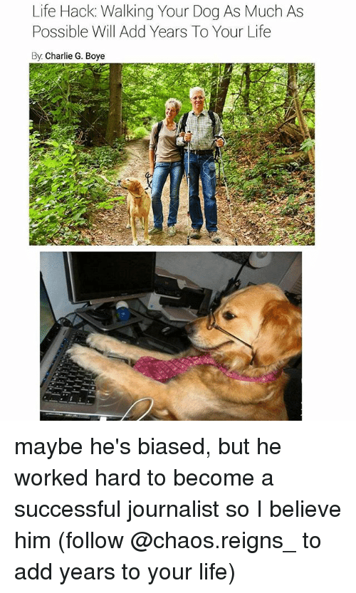 Charlie, Life, and Memes: Life Hack: Walking Your Dog As Much As  Possible Will Add Years To Your Life  By Charlie G. Boye maybe he's biased, but he worked hard to become a successful journalist so I believe him (follow @chaos.reigns_ to add years to your life)