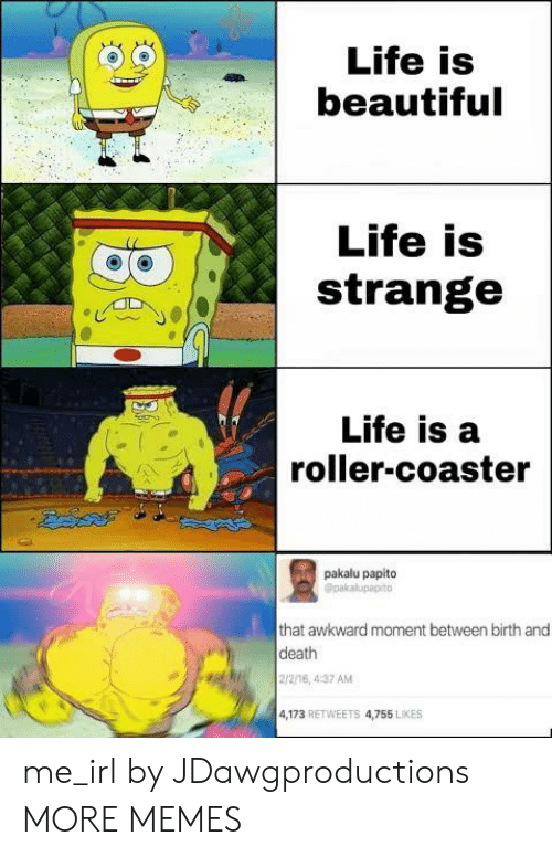 Life Is A: Life is  beautiful  Life is  strange  Life is a  roller-coaster  pakalu papito  Opakalupapito  that awkward moment between birth and  death  2/2/16, 4:37 AM  4,173 RETWEETS 4,755 LIKES me_irl by JDawgproductions MORE MEMES