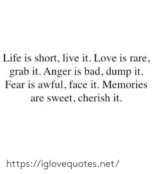 Bad, Life, and Love: Life is short, live it. Love is rare,  grab it. Anger is bad, dump it  Fear is awful, face it. Memories  are sweet, cherish it https://iglovequotes.net/