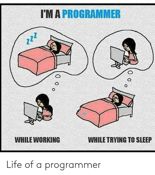 Life Of: Life of a programmer