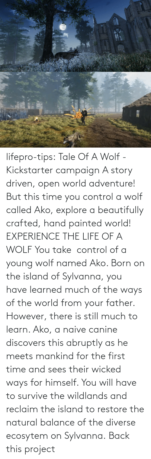 You Take: lifepro-tips: Tale Of A Wolf - Kickstarter campaign  A story driven, open world adventure! But this time you control a wolf  called Ako, explore a beautifully crafted, hand painted world!  EXPERIENCE THE LIFE OF A WOLF You take  control of a young wolf named Ako. Born on the island  of Sylvanna, you have learned much of the ways of the world from your  father. However, there is still much to learn. Ako, a naive canine  discovers this abruptly as he meets mankind for the first time and sees  their wicked ways for himself. You will have to survive the wildlands  and reclaim the island to restore the natural balance of the diverse  ecosytem on Sylvanna.   Back this project