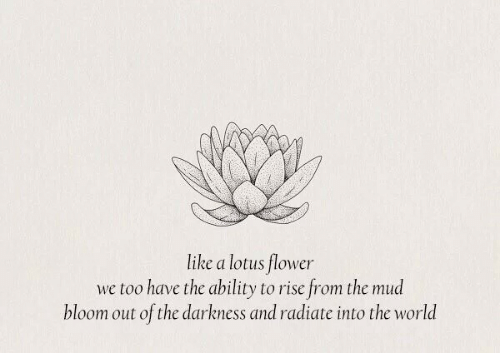 Flower, Lotus, and World: like a lotus flower  we too have the ability to rise from the mud  bloom out of the darkness and radiate into the world