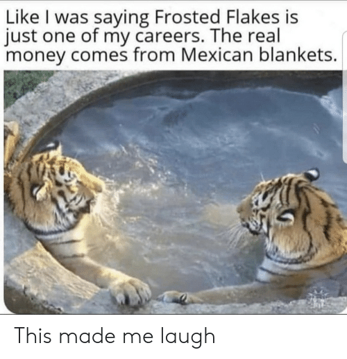 Money, The Real, and Mexican: Like I was saying Frosted Flakes is  just one of my careers. The real  money comes from Mexican blankets. This made me laugh