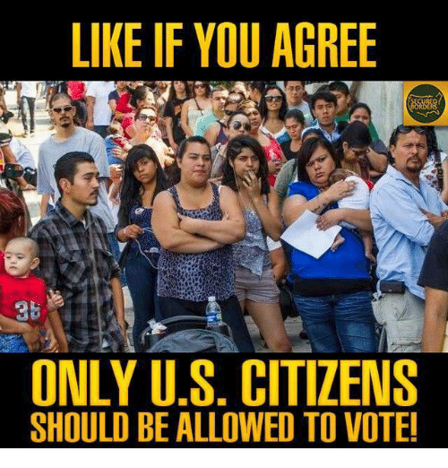 Memes, 🤖, and Citizens: LIKE IF YOU AGREE  ONLY U.S. CITIZENS  SHOULD BE ALLOWED TO VOTE!
