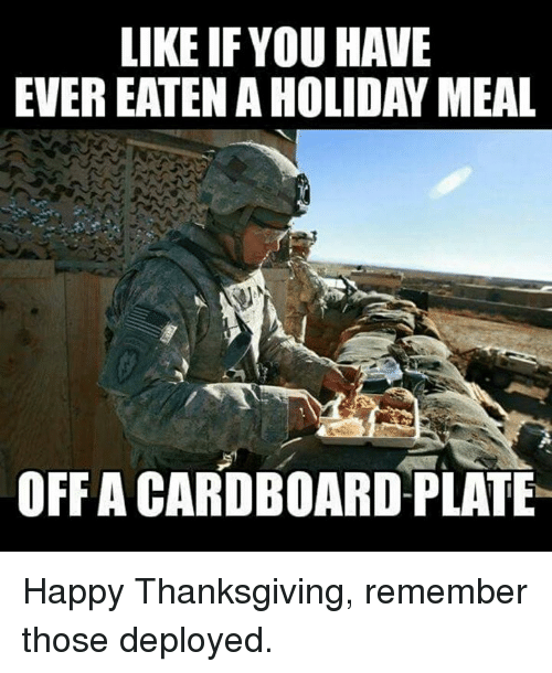Memes, Thanksgiving, and Happy: LIKE IFYOU HAVE  EVER EATEN A HOLIDAY MEAL  OFFA CARDBOARD PLATE Happy Thanksgiving, remember those deployed.