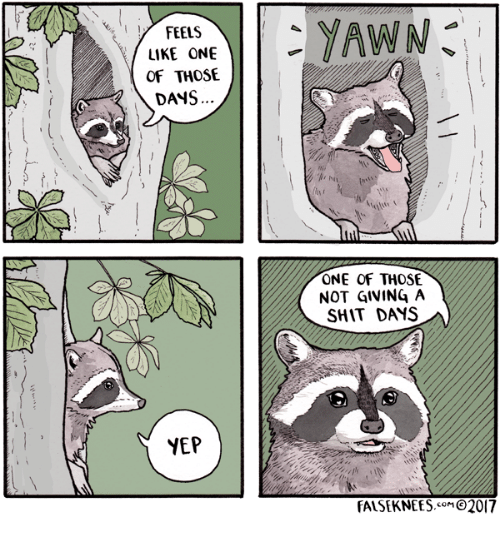 Shit, One, and Like: LIKE ONE  OF THOSE  DANS  ONE OF THOSE  NOT GIVING A  SHIT DAYS  NEP  FALSEKNEES.o92017