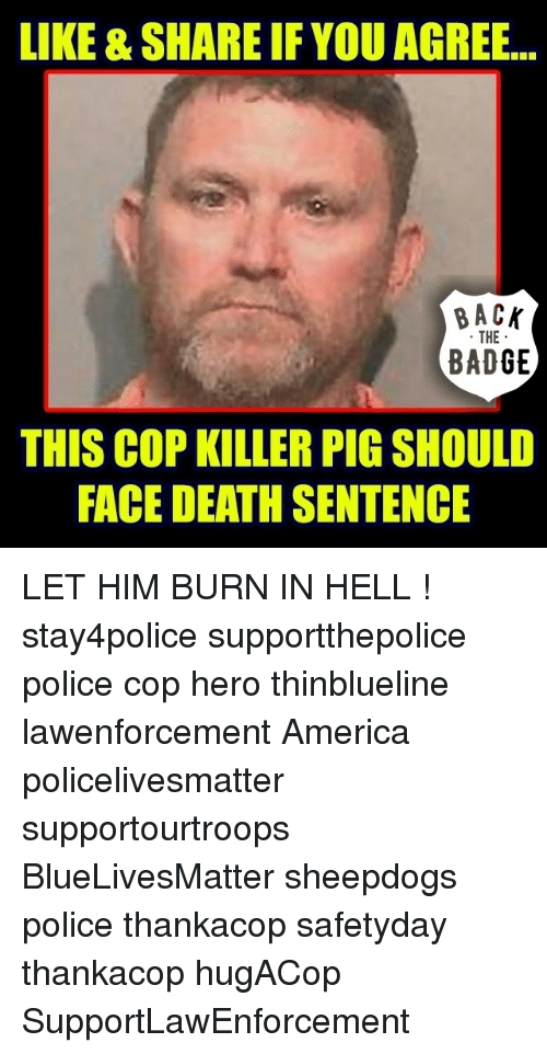America, Memes, and Police: LIKE & SHARE IF YOU AGREE.  BAC  THE  BADGE  THIS COP KILLER PIG SHOULD  FACE DEATH SENTENCE LET HIM BURN IN HELL ! stay4police supportthepolice police cop hero thinblueline lawenforcement America policelivesmatter supportourtroops BlueLivesMatter sheepdogs police thankacop safetyday thankacop hugACop SupportLawEnforcement