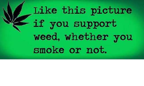 Memes, Weed, and 🤖: Like this picture  if you support  weed, whether you  Smoke or not.