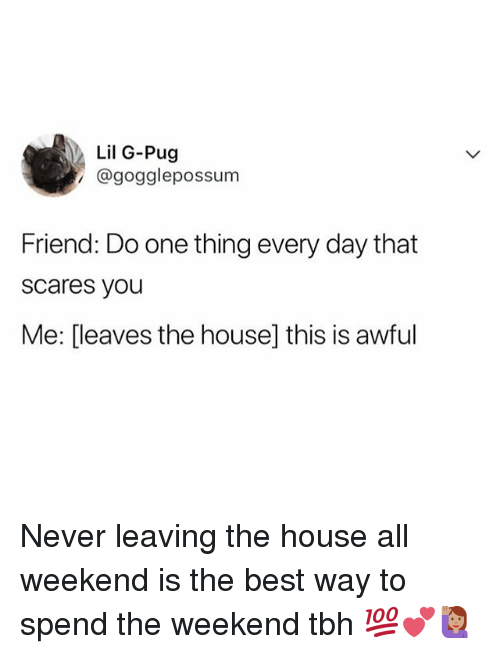 Memes, Tbh, and Best: Lil G-Pug  @gogglepossunm  Friend: Do one thing every day that  scares you  Me: [leaves the house] this is awful Never leaving the house all weekend is the best way to spend the weekend tbh 💯💕🙋🏽‍♀️